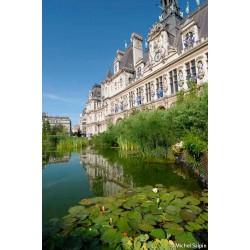 L'hôtel-de-Ville pendant Paris-Plage