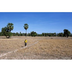 A Si Phan Don au Laos, saison sèche