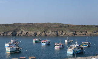 Panorama du port du Conquet