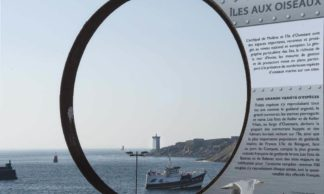 Le Conquet, port de départ vers l'archipel de Molène : Molène et Ouessant