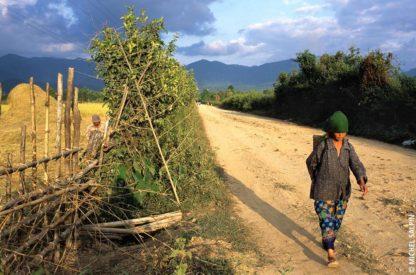 Chemin de terre à Vang Vieng au Laos