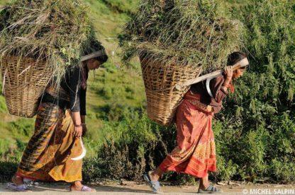 Paysannes à Nagarkot au Népal