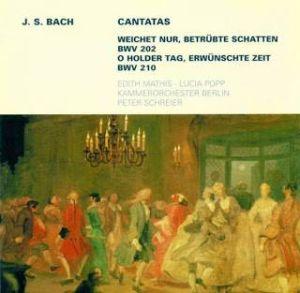 Bach-Cantatas