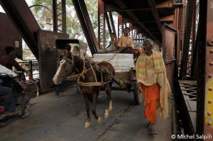 Agra-inde-005