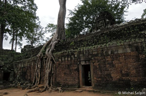 Angkor-cambodge-15