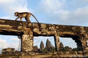 Angkor-cambodge-53