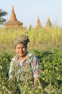 Bagan-portraits-birmanie-34