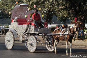 Calcutta-inde-032