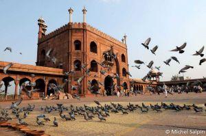 Delhi-inde-003