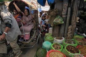 Katmandou-nepal-018