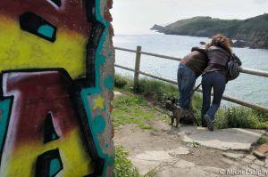 Graffiti et chien