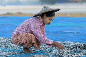 Ngapali-birmanie-001