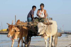 Ngapali-birmanie-036