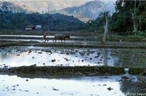 Nong-khiaw-laos-023