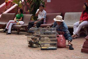 Phnom-penh-cambodia-002