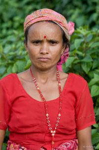 Portrait-pokhara-05