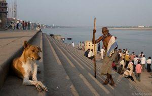 Varanasi-inde-37