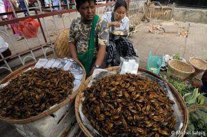Yangon-birmanie-036