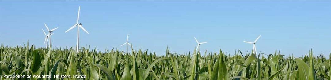 Plouarzel, le parc éolien